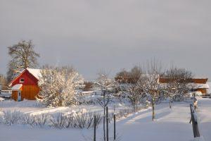 munz-ferienhaus-006