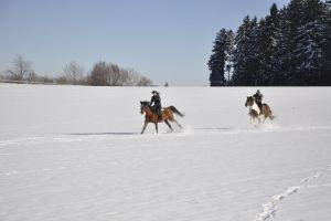 munz-winter-012