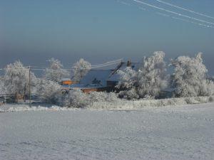 munz-winter-026